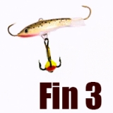 Fin 3